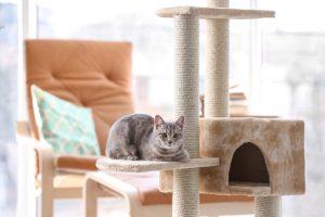 Kattenkrabpaal grijs