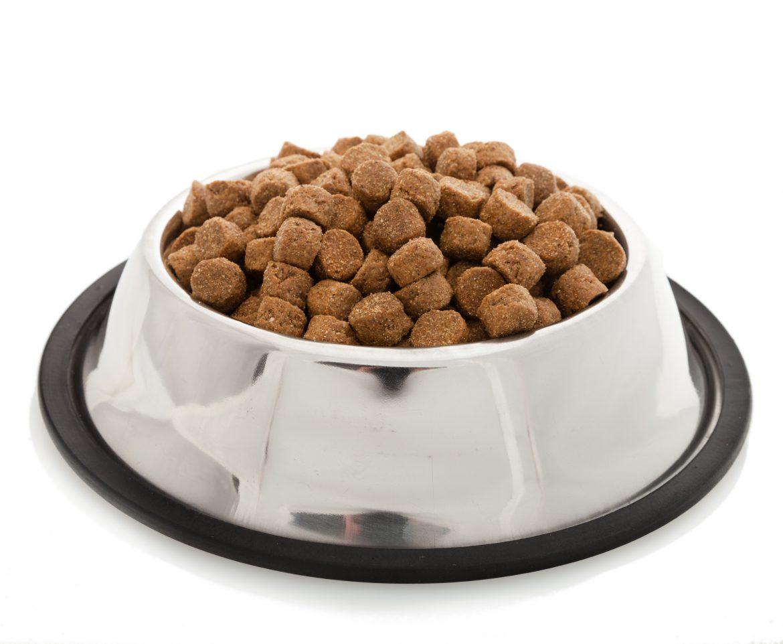 Gezonde voeding voor je huisdier