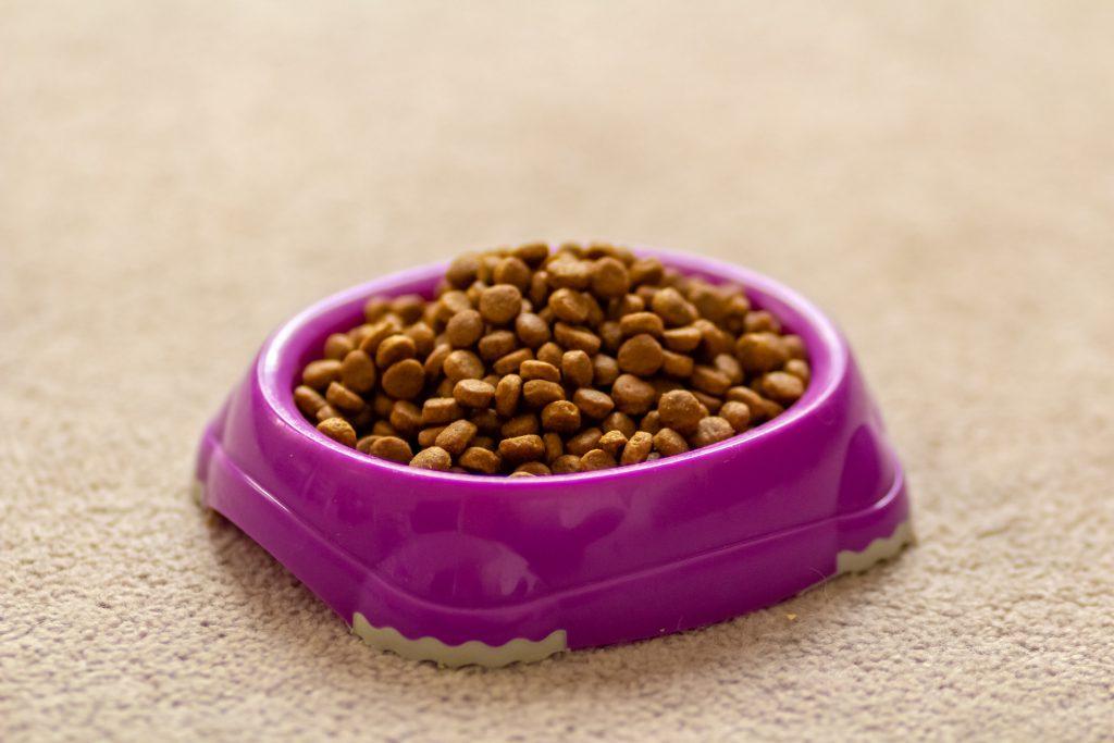 kattenvoer bestellen